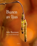 Buren av ljus